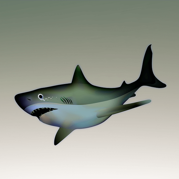 An Illustration by artist and designer Chris von Szombathy. Title: Shark. Work from 2015–2017