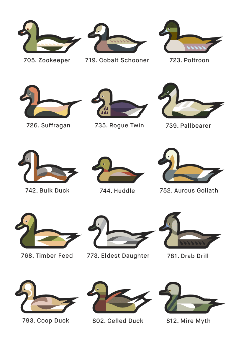 A page from 1000 Ducks, a graphic catalogue of imaginary duck species by artist and designer Chris von Szombathy. 07